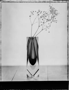 Polaroid-3.jpg