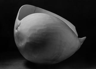 shell-6.jpg