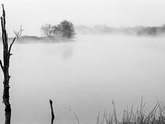 Niebla-5.jpg