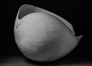 shell-5.jpg