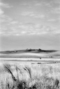 Land-3.jpg