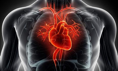 canalopatias-cardiacass.jpg