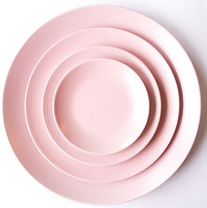 Blush Stoneware Dinner Set