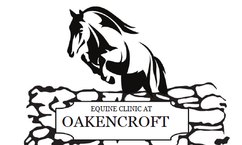 Equine Clinic at Oakencroft