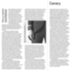 canary-layout-complete-3_edited.jpg