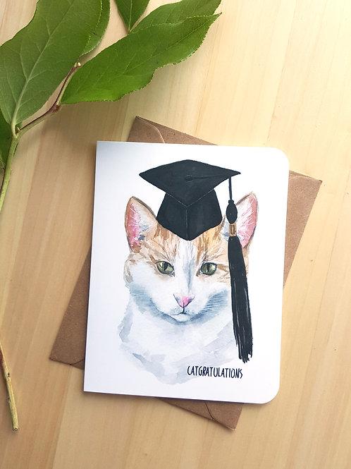 Cat Grad