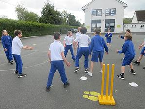 Cricket 4th cL (4).JPG