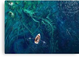 'Dragon bones' Canvas Print by Stefan Ko