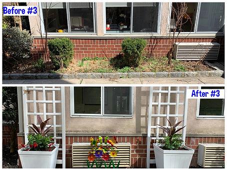 Garden Rehab #3.jpg