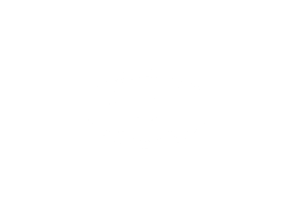 vision_white line.png