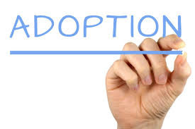 Adoptee to Birth Mom to Orphan Advocate
