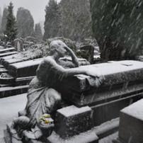 Sneeuwtapijt voor Aza