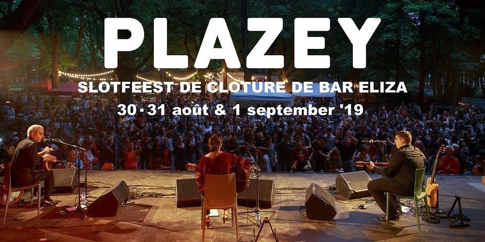 Plazey 2019 - Feest in het park