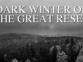 The Dark Winter of the Great Reset