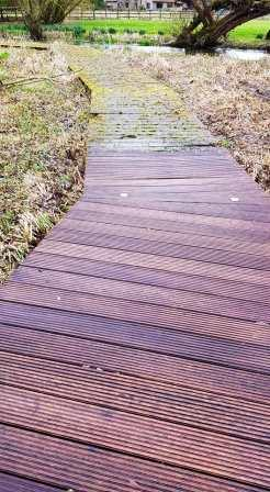 Riverside Decked Walkway
