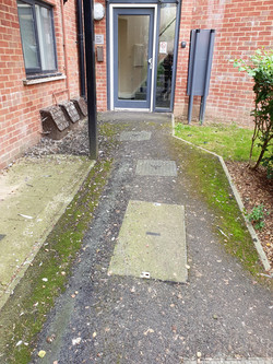 Moss Removal using our Westermann Brush System