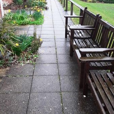 Care Homes Paths Before