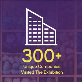 300+ Companies