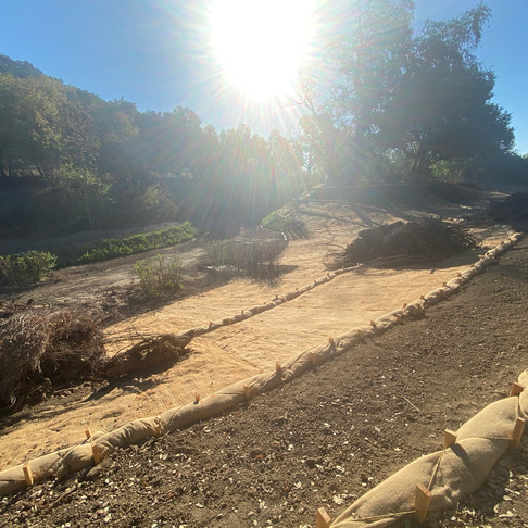 Napa River Restoration