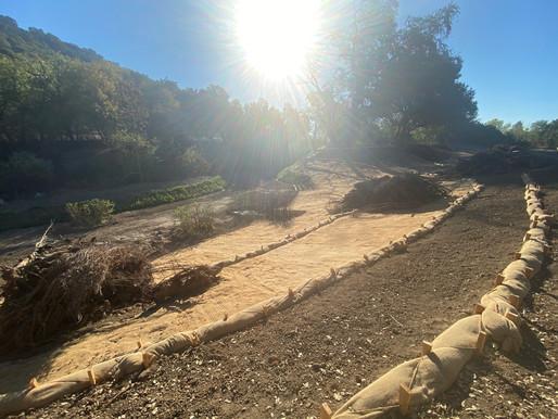 Napa River Restoration