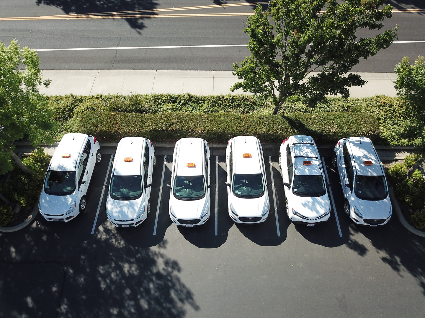 Our fleet has since grown to 10 cars.