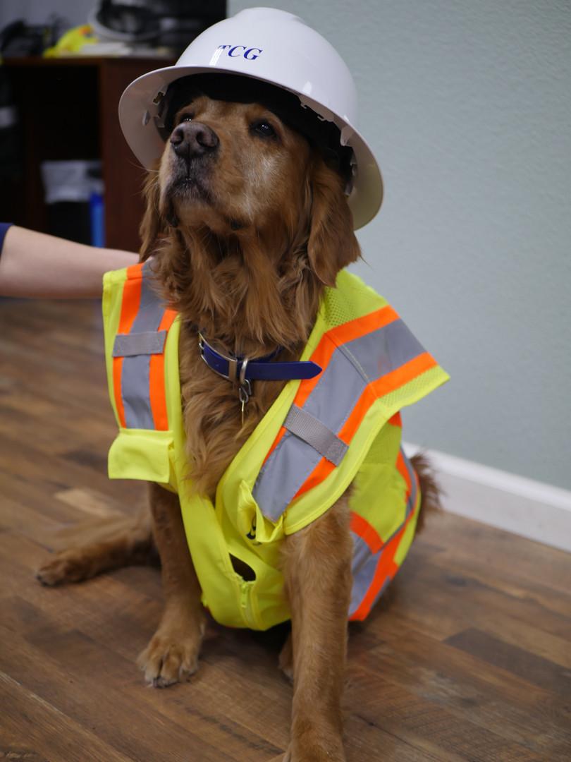 Kona, Stormwater Inspector