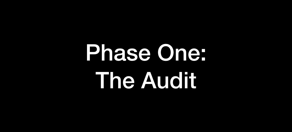 Phase One: The Audit
