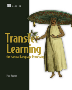 Transfer Learning for Natural Learning Processing