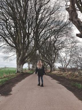 Dark Hedges aka The King Road