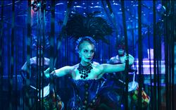 Tryon Entertainment Ballerinas