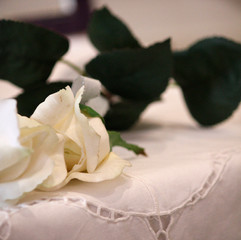 A rose on a table at a wedding
