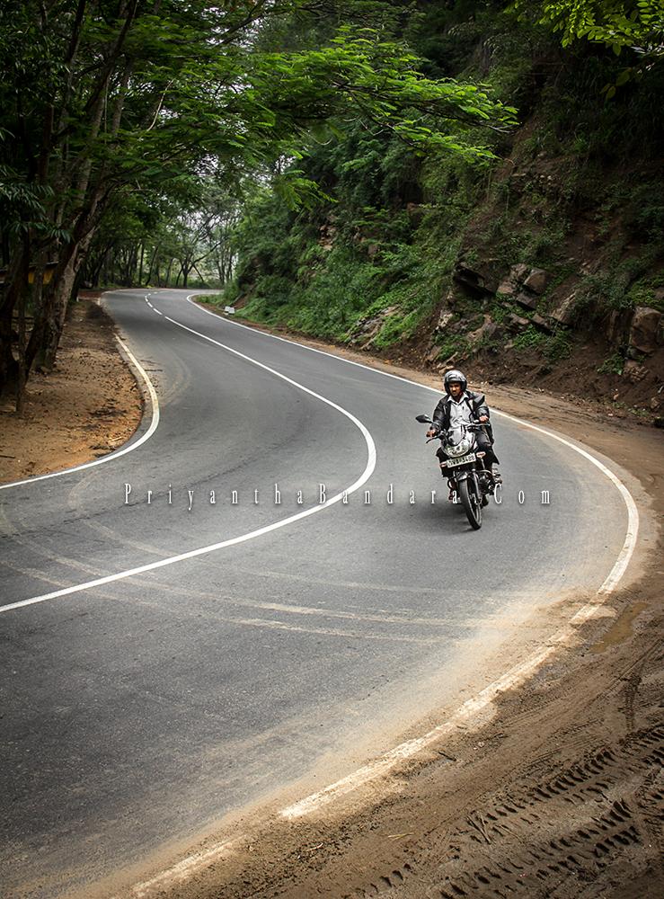 Lone Rider at Digana