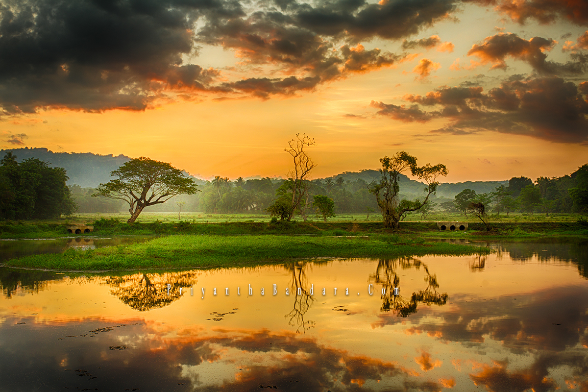 Saragama sunrise 1