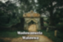 edit-8247 cover.jpg