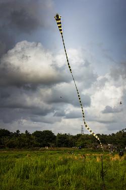Malabe Kites 9