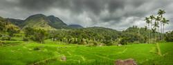 Weerakongama Panorama