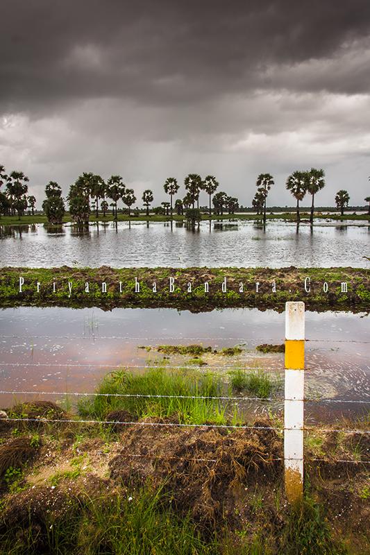 Jaffna in Rainy Season 3