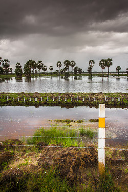Jaffna in Rainy Season 3