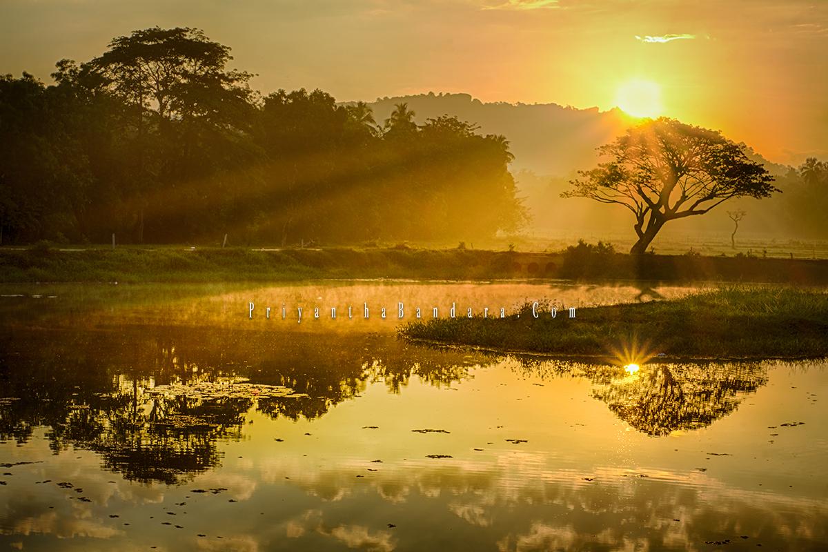 Saragama sunrise 3