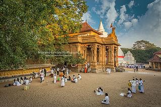 Sri Lanka travel tourism photography