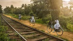 Going to School in Vavuniya
