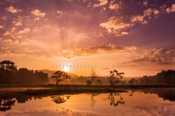Saragama sunrise 4