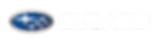 4c_Horizontal White Text_アートボード 1.png