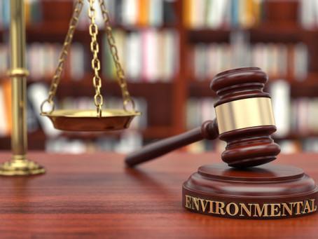 Execução Fiscal por Infração Ambiental Prescreve em Cinco Anos