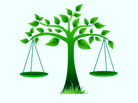 TJMG reconhece a prescrição intercorrente de infração ambiental