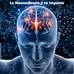 La Neurociencia y su relación con los negocios