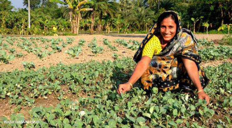 Bangladesh_Gender-WE_Woman-Farmer.jpg