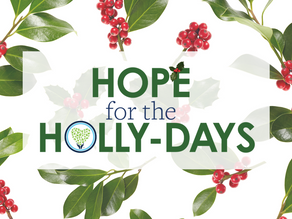 Hope for the Holly-Days