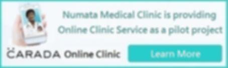 Numata Medical Online_E.jpg