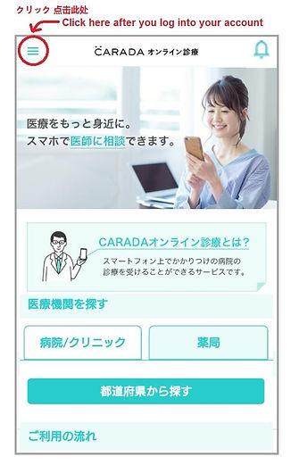 Numata Medical Online 17 health insuranc